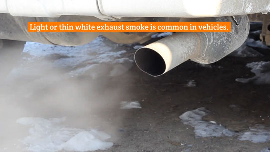 Exhaust Burning Oil Video Image